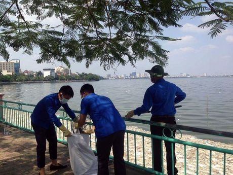 Thanh nien Thu do tham gia lam sach Ho Tay - Anh 3