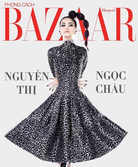 Day la quan quan it bi nem da nhat trong lich su Vietnam's Next Top Model - Anh 1