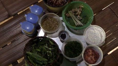 Thom ngon moc vit Luc Yen - Anh 2