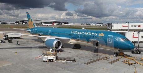 Chim va vao dong co Dreamliner cua Vietnam Airlines - Anh 1
