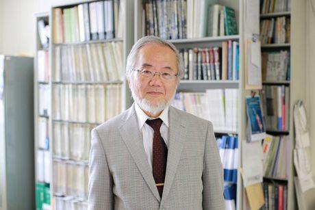 Nha khoa hoc Nhat Ban doat giai Nobel Y hoc 2016 - Anh 1