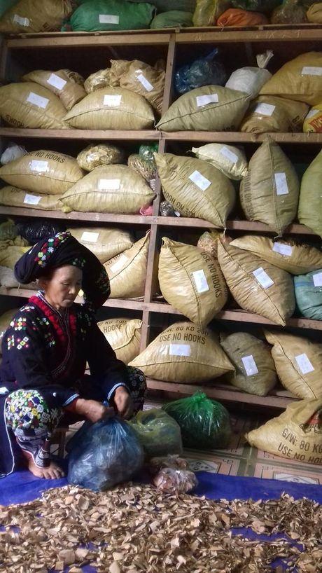 Vua Chua vo sinh hiem muon tai Muong Lat, Thanh Hoa - Anh 4
