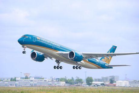 Bi chim va, hai 'sieu may bay' Boeing cua Vietnam Airlines gap su co - Anh 1