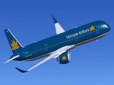 2 may bay Vietnam Airlines bi chim va vao dong co - Anh 1