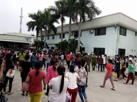 Nghe An: Hon 2.500 cong nhan dinh cong doi quyen loi - Anh 1
