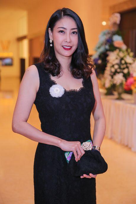 Dan sao Viet mac ton sur ton du sinh nhat Mr. Dam - Anh 14