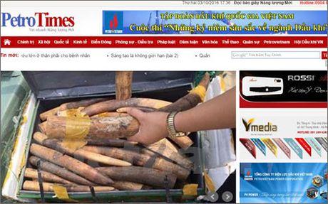 Dinh ban bao Petrotimes, thu the nha bao cua ong Nguyen Nhu Phong - Anh 1