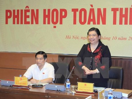 Pho Chu tich Quoc hoi: Tang cuong giam sat chinh sach dan toc - Anh 1