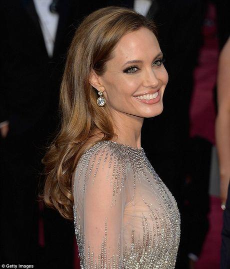Nhung tai san thuoc ve Angelina Jolie sau ly hon Brad Pitt - Anh 1