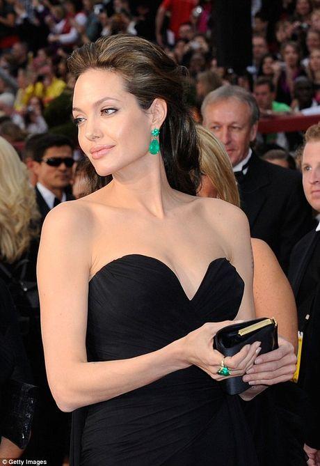 Nhung tai san thuoc ve Angelina Jolie sau ly hon Brad Pitt - Anh 4