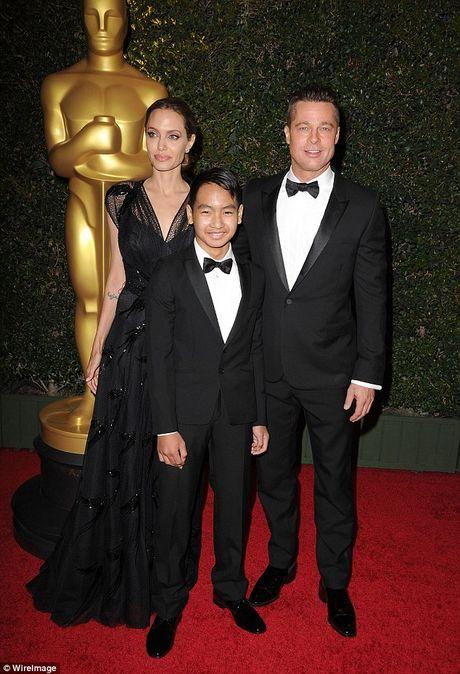 Nhung tai san thuoc ve Angelina Jolie sau ly hon Brad Pitt - Anh 6