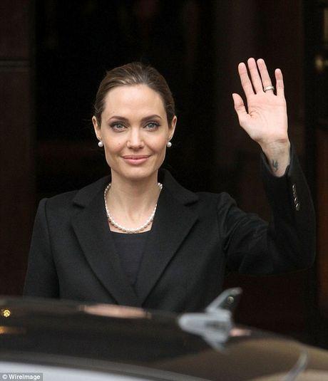 Nhung tai san thuoc ve Angelina Jolie sau ly hon Brad Pitt - Anh 8