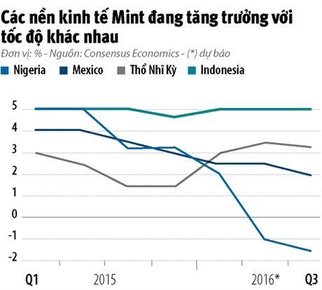 Infographic: Khoi Mint co con hap dan? - Anh 6