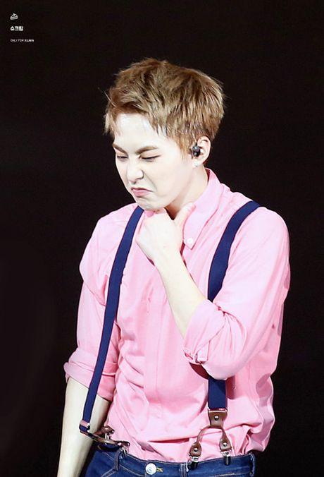 10 idol Kpop de thuong giong het chuot hamster - Anh 10