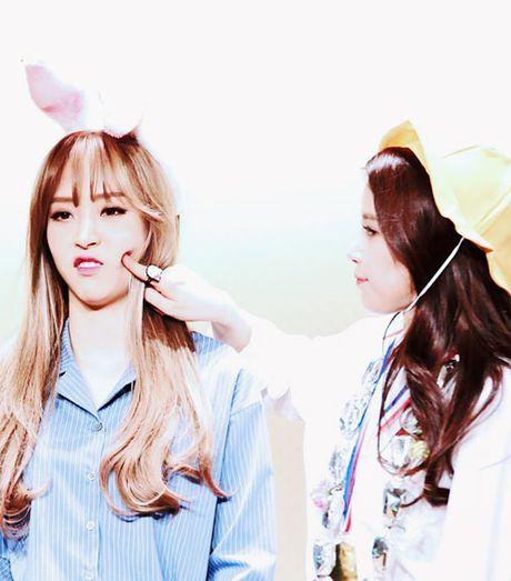 10 idol Kpop de thuong giong het chuot hamster - Anh 7