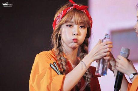 10 idol Kpop de thuong giong het chuot hamster - Anh 8