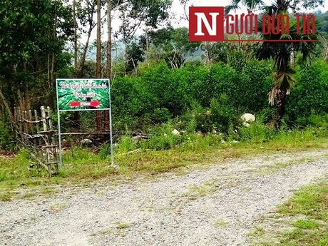 Dinh chi xay dung khu du lich khong phep cua Pho Cong an huyen - Anh 1