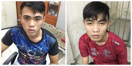Truy bat hai doi tuong cuop tui xach cua du khach nuoc ngoai - Anh 1