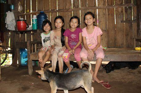 Dam bao viec hoc tap cho tre em Viet kieu tu Campuchia ve Viet Nam - Anh 4