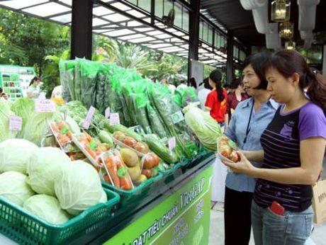 Khoang 1.800 dong san pham tham gia Tuan le nhan dien nong san Viet - Anh 1
