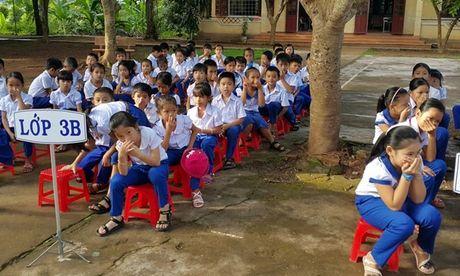 Quang Tri: Hoc sinh bit mui hoc bai vi chuong lon sat nach truong - Anh 1
