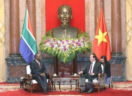 Chu tich nuoc Tran Dai Quang tiep Pho Tong thong Nam Phi - Anh 1