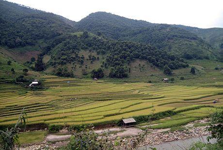 Bi an nhung ngoi nha… hoang o Minh Luong - Anh 1