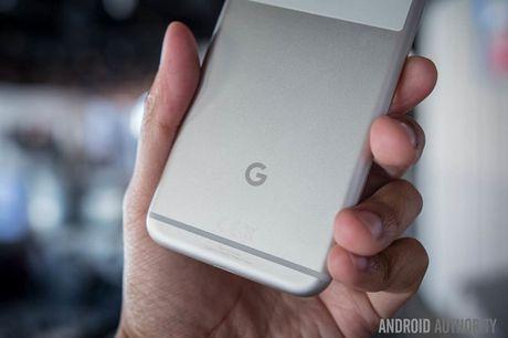 Google xac nhan khai tu Nexus, ngung ban Nexus 5X va 6P - Anh 1