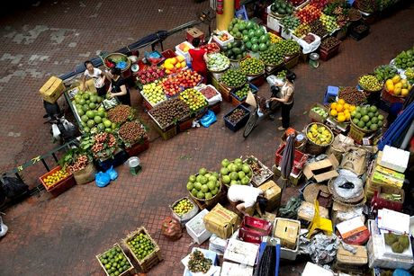 World Bank: Kinh te Viet Nam dang chung to kha nang chong chiu cua minh - Anh 1