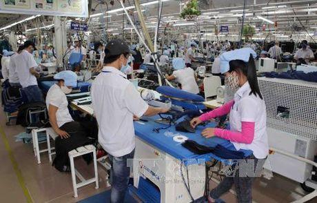 FTA Viet Nam - EAEU co hieu luc: Tan dung uu dai de tao loi the canh tranh - Anh 1