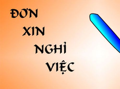 Lao dong tu y nghi viec phai boi thuong nhung gi? - Anh 1
