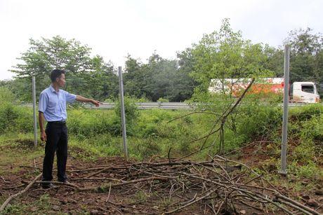 Chum anh: Hang rao duong cao toc TP.HCM-Long Thanh-Dau Giay bi lan chiem - Anh 5