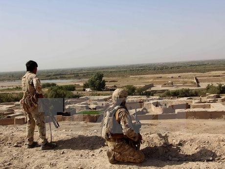 Nhieu binh sy Afghanistan 'mat tich' khi huan luyen tai My - Anh 1