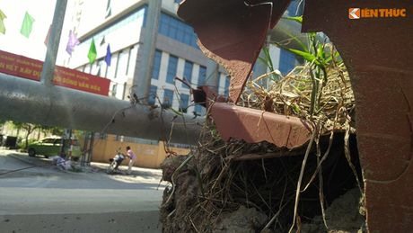 Chau hoa vo nhech nhac trong ham chui tien ti o Ha Noi - Anh 10