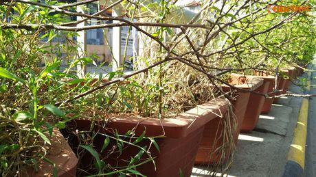 Chau hoa vo nhech nhac trong ham chui tien ti o Ha Noi - Anh 2