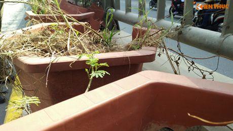 Chau hoa vo nhech nhac trong ham chui tien ti o Ha Noi - Anh 8