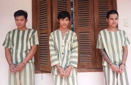 Khoi to cac doi tuong con do - Anh 1
