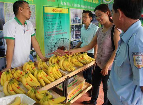 TP Ho Chi Minh: 174 gian hang tham gia 'Cho phien nong san lan V' - Anh 1