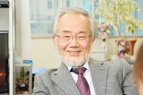 Mua Nobel 2016: Cu khoi dau an tuong tu Nhat Ban - Anh 1