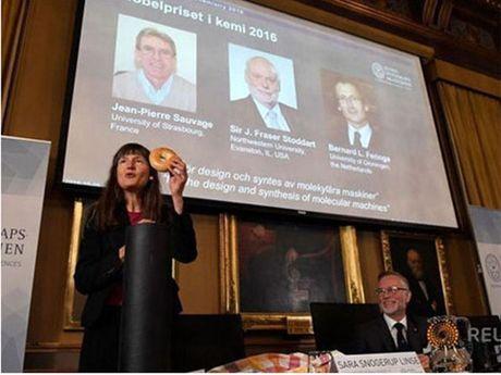 Giai Nobel Hoa hoc 2016 vinh danh may phan tu - Anh 1