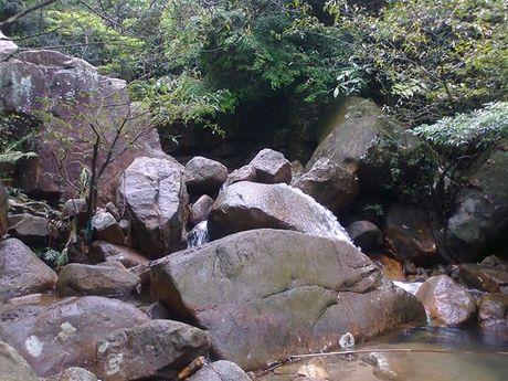 Trekking Lung Xanh - 'Ta Nang vung Dong Bac' - Anh 12