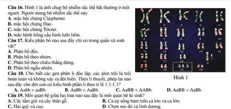 Lam bai mon Sinh hoc: 'Thoi gian la ke thu cua thi sinh' - Anh 1