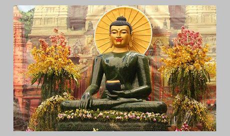 Binh Dinh cho don Phat ngoc hoa binh the gioi - Anh 1