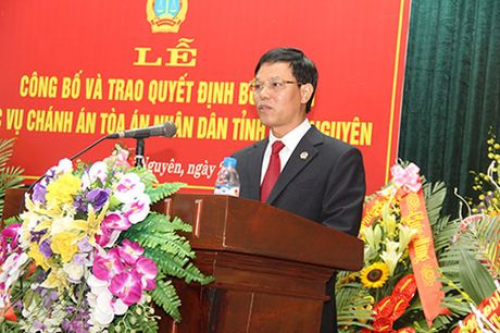 Tam dinh chi phat tu Dung 'tong', Chanh an toa Thai Nguyen noi gi? - Anh 1