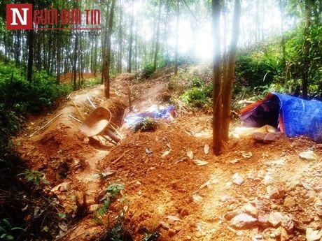 Thua Thien Hue: 'Vang tac' van chua het 'nong' - Anh 2