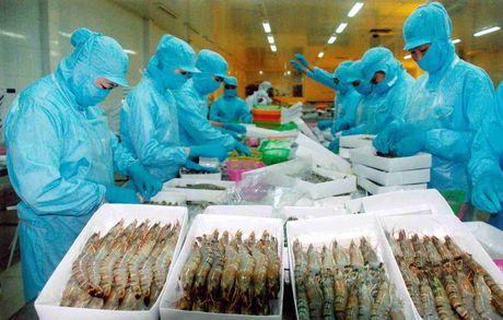 EU tiep tuc canh bao hang thuy san Viet Nam du luong kim loai nang - Anh 2