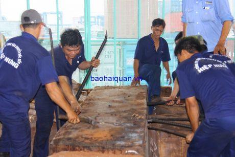 Can canh lo hang hon 2 tan nga voi nhap lau bi bat giu tai cang Cat Lai - Anh 5