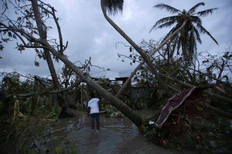 Chum anh: Haiti te liet, 339 nguoi chet vi sieu bao Matthew - Anh 8