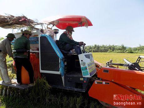 Nong dan Quy Hop dau tu may gat dap lien hop - Anh 2