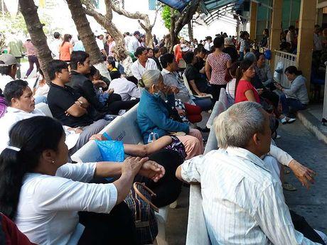 Viet Nam o top 2 ban do ung thu the gioi - Anh 1